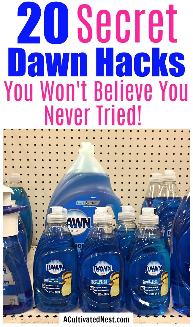 72218223297e7c04be5c80d3d918440d 20 Frugal Ways to Use Dawn Dish Soap  Did you know that Dawn can be used for muc...