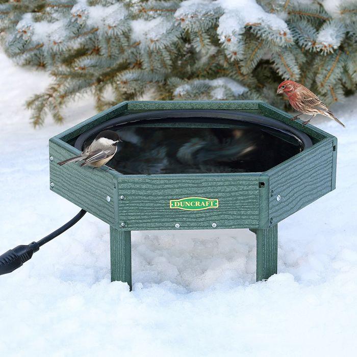 1000 Ideas About Heated Bird Bath On Pinterest Bird