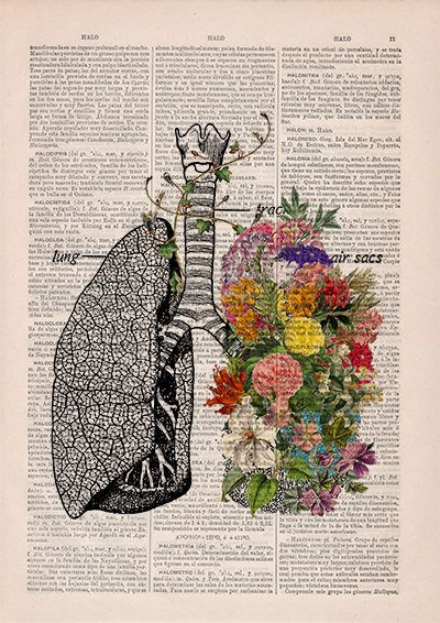 Springtime Breathe Decorative Art Lungs With Flowersnature
