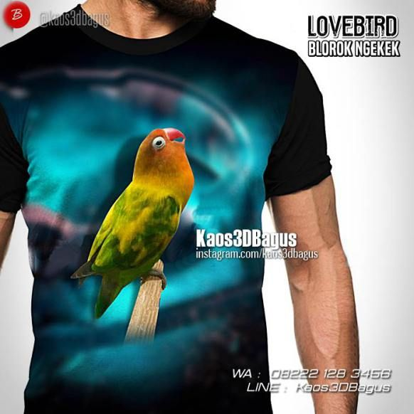 Kaos LOVEBIRD, Kaos BURUNG, Kaos3D Kicau Mania, Kaos LOVEBIRD BLOROK NGEKEK, Kaos Gambar Burung Lovebird, https://kaos3dbagus.wordpress.com, WA : 08222 128 3456, LINE : Kaos3DBagus