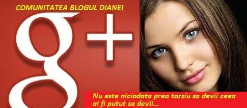 Blogul Dianei: Comunitatea Google+ Blogul Dianei a implinit 5.000...