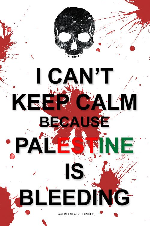 End israeli war crimes, there were no soldiers kidnapped, only excuses to continue the genocide! Wake up!! #freegaza #freepalestine
