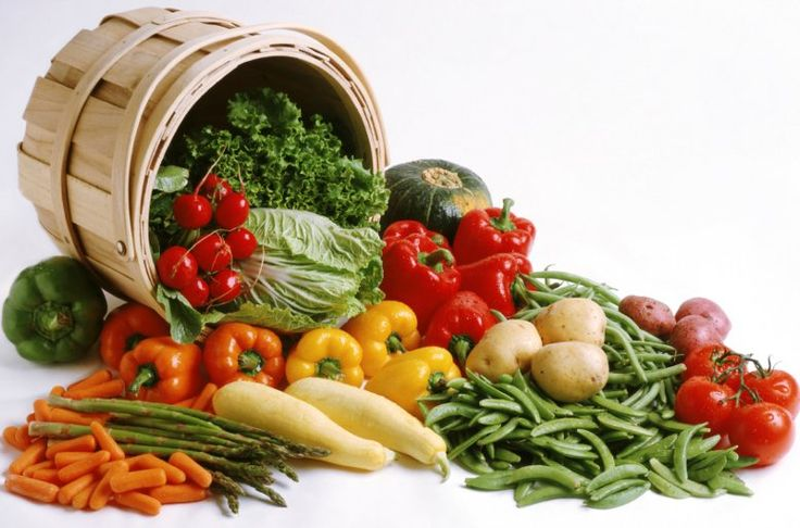 Organic Vegetable Garden Basics - It doesn't take a rocket scientist to plant vegetables. But if you want to do this the old fashioned way which has been proven to be very effective, you should know the organic vegetable gardening basics. READ MORE - http://www.organicforlife.co/organic-vegetable-garden-basics/#