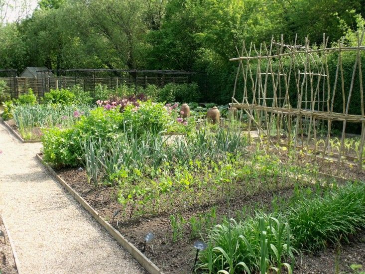 Ask The Expert: Sarah Raven's 10 Tips for Growing a Kitchen Garden