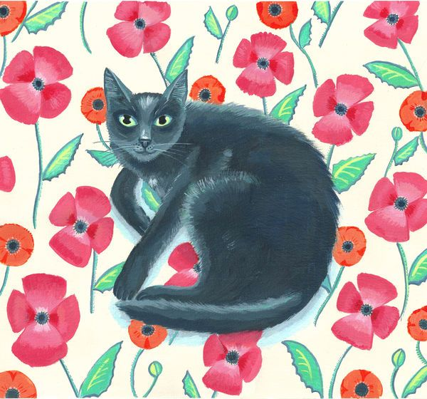Mary Stubberfield - Black Velvet on a floral background