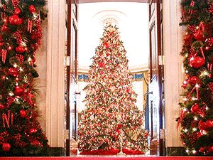 We love our customers! Check out The White House -thanks for buying Christmas Ornaments for your trees