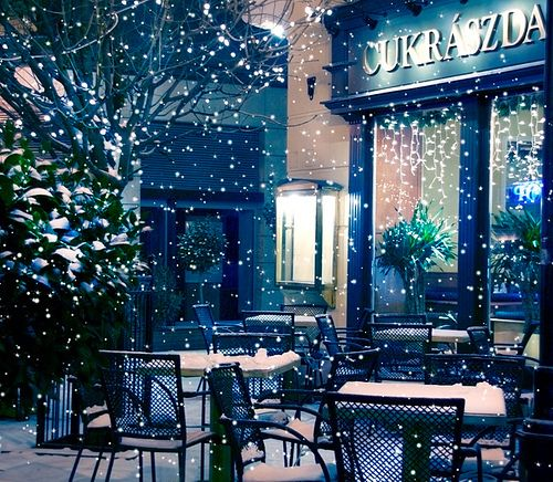 cafe winter love