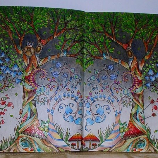 17 Best images about Enchanted Forest Coloring Book Completed ...
