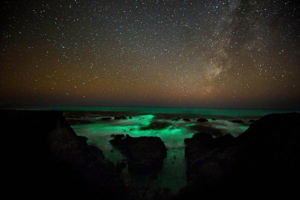 http://www.travelettes.net/wp-content/uploads/2012/09/198_1bioluminescent_plankton_s_w_l-600x400.jpg: The Mars, The Artists, Starry Night, California, Glow Bioluminescent, Bioluminescent Phytoplankton, Glow In The Ocean, Bioluminescent Plankton, Plankton Glow