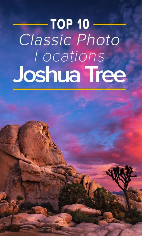 Planning a trip to Joshua Tree? Our guide will show you where to go in the park to get the best pictures.