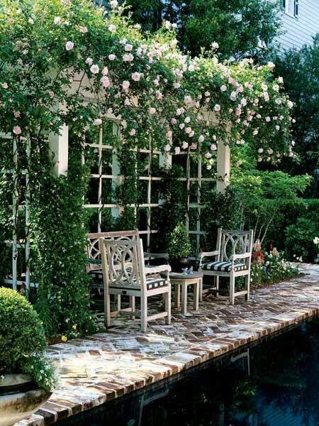 Gorgeous rose arbor