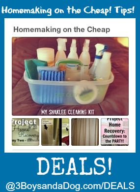 17 Best Images About Saving Money On Pinterest Homemade