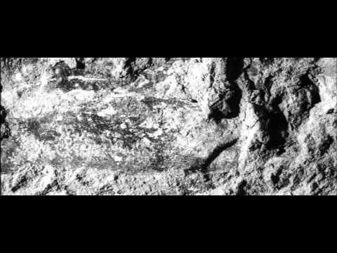 Jan Svankmajer - J.s. Bach - Fantasy In G Minor