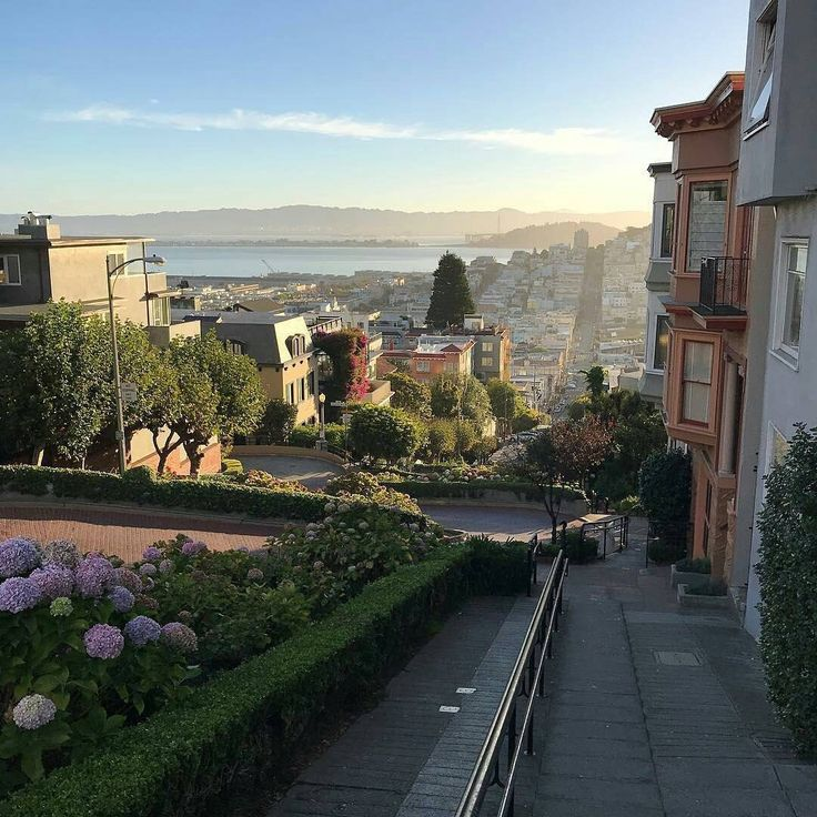 Lombard St San Francisco by @pilam76 by photoblog.sanfranciscofeelings.com sanfrancisco sf bayarea alwayssf goldengatebridge goldengate alcatraz california