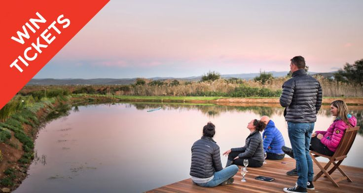 Outdoor swims in nature are a rare treat. We've rounded up our favourite reservoirs for swimming in the Cape.