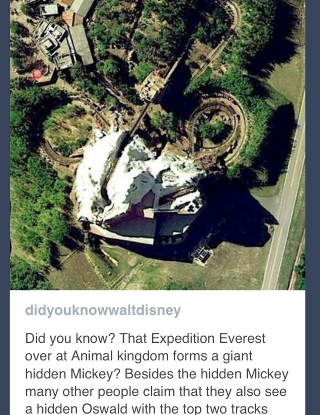 Hidden Mickey.. Mind blown!!