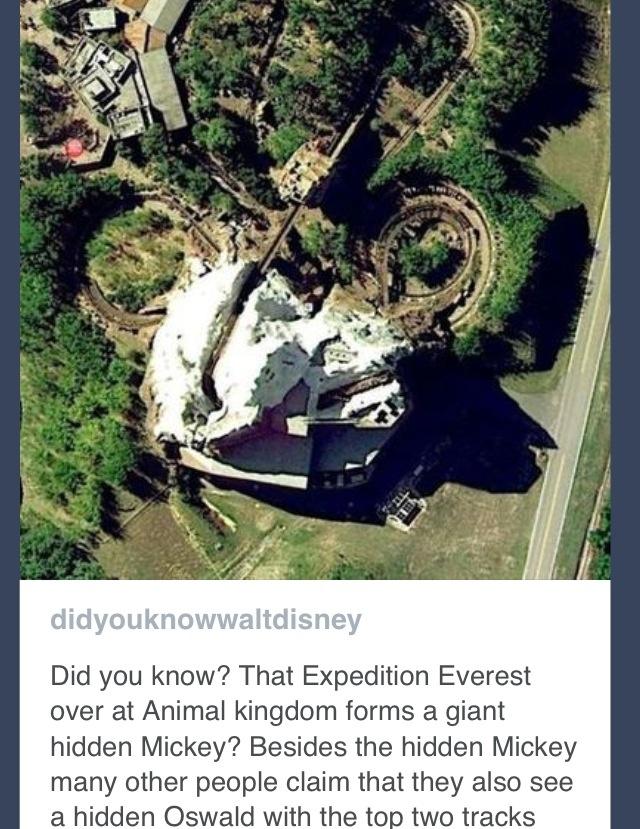 Hidden Mickey.. Mind blown!!