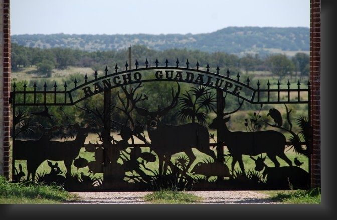 1000 Images About Ranch Gates On Pinterest Iron Gates