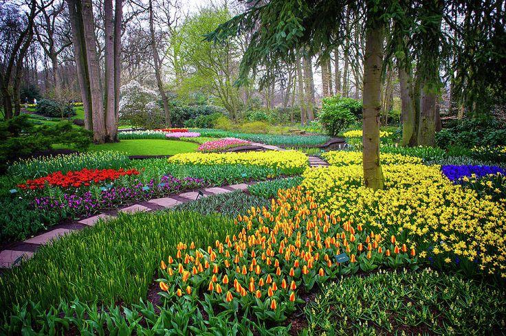 Keukehof Botanic Garden 2015 Photograph by Jenny Rainbow