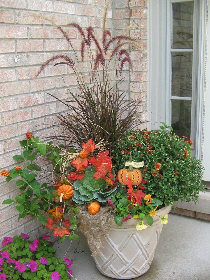 Container Gardening Ideas Pinterest Photograph Fall contai
