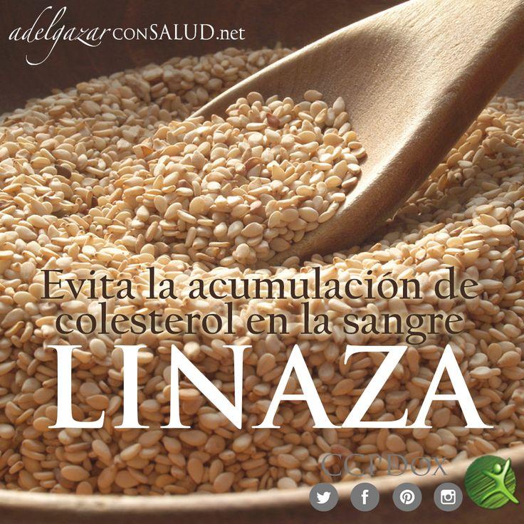 Las fibras solubles de la #linaza impiden la acumulación de #colesterol en la sangre, facilitando su eliminación por vías naturales. Esta propiedad de la #linaza se debe a que posee un tipo de #fibra que se adhiere al colesterol evitando de esa manera que sea absorbido por el organismo. #TipsDox #adelgazar #adelgazarconsalud #salud #alimentacion #nutricion #dieta #ccpdox