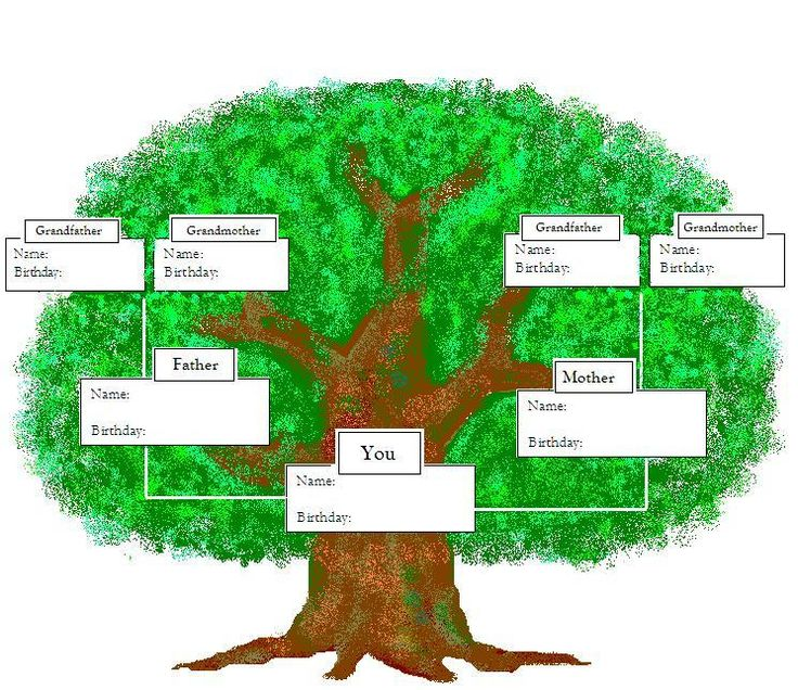 The 25+ best Family tree for kids ideas on Pinterest | Family tree ...