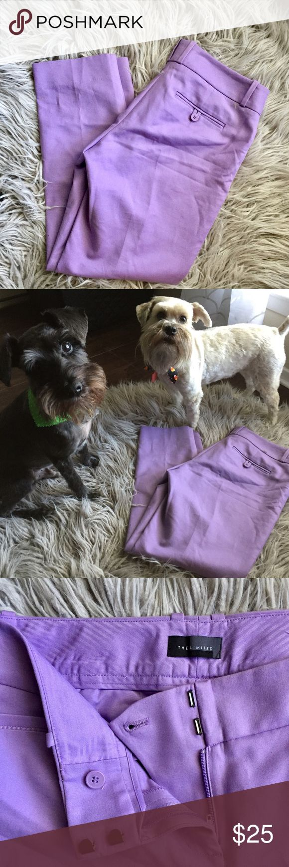 """• Lilac Purple Ankle Crop The Limited Pants • The pups say, """"Just make the purchase!""""  These purple pink fantastical pants are the perfect addition to a lagging closet.   Great for all seasons! Sizing tag has been removed but these fit like a 4/6. The Limited Pants Ankle & Cropped"""
