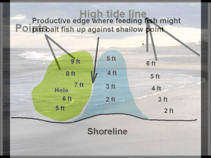 171 best images about surf fishing on pinterest for Long island surf fishing report