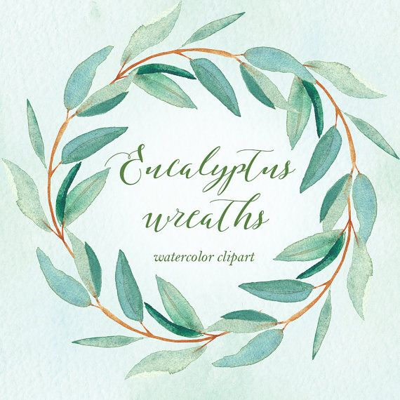 Eucalyptus  wreaths watercolor clipart hand by LABFcreations