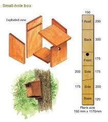 návod na stavbu ptačí budky - Hledat Googlem