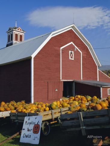 Pumpkins for Sale in Front of a Red Barn, Vermont, New England, USA Photographic Print