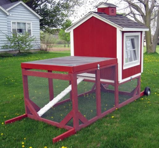 Chicken tractor for my future chickens