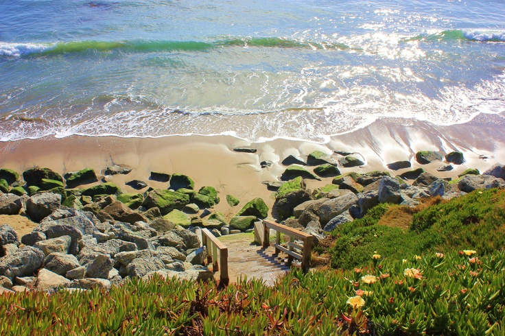 Pleasure Point, Santa Cruz, CA.  I took this one on my walk the other day. Beautiful January.