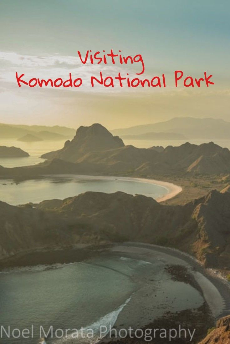 Visiting Komodo National park in Indonesia and the islands around the park. Highlights include hiking and visiting the places where the famous Komodo dragons  like to stay. Check out more images and story on this post here http://travelphotodiscovery.com/visiting-komodo-national-park/