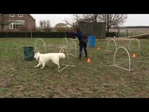 Hoopers challenges september 2015 Novice - YouTube