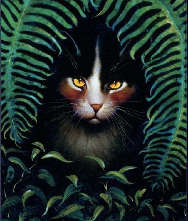 Spottedleaf Warrior Cats Con Imagenes Gatos Gatos Grises