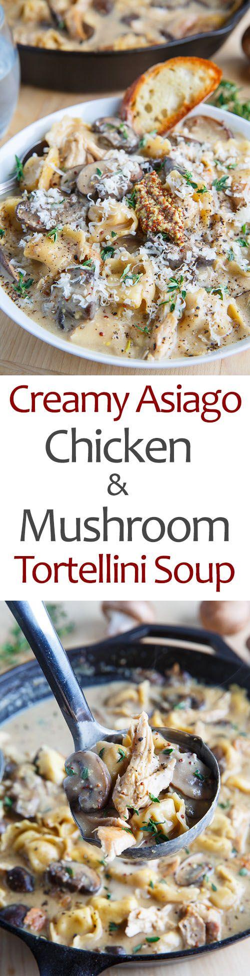 Creamy Asiago Chicken & Mushroom Tortellini Soup