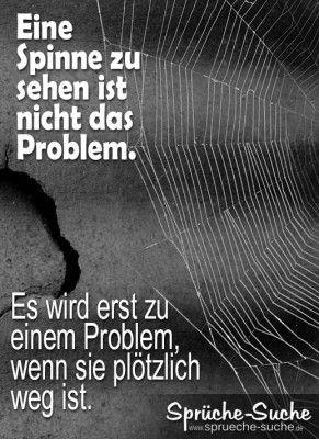 Eine Spinne zu sehen ist nicht das Problem. Es wird erst zu einem Problem, wenn sie plötzlich weg ist.