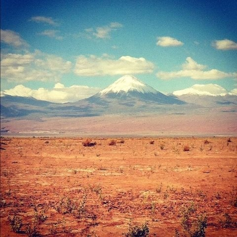 Atacama desert, Chile    Photo yesterday by my son Mark