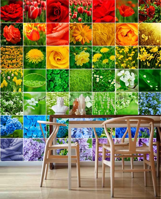 Stickers For Tiles Color Nature Bathroom Tiling Wall