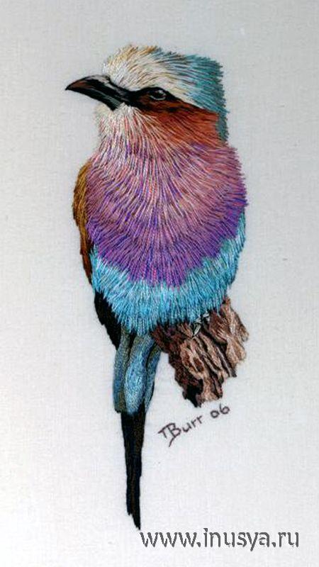 вышитые птицы Триш Бурр