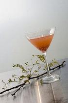 Dusk in Eden Cocktail Recipe with 42 Below