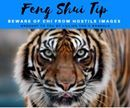 Feng Shui Tip!  Beware of Chi from Hostile Images  While the choice of art is extremely personal in nature, it is still vital to open your feng shui eyes when considering what art to hang on the walls in your home. Color plays a large part as well as subject matter and I'll be writing more about this in the future. However, for now just remember that bad luck and misfortune can be caused by the chi emanated by hostile images and unfortunately it works very quickly and quietly.   Stay clear…