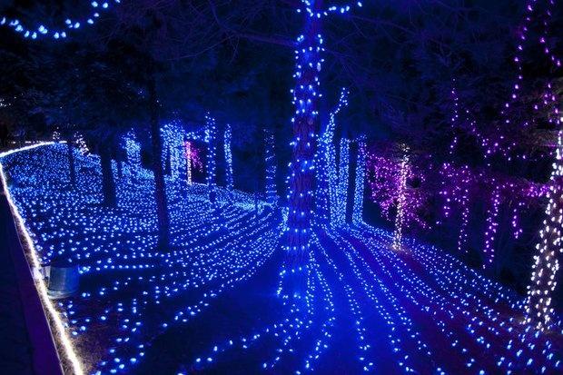 Cambria Christmas Market | Photos | SanLuisObispo.com