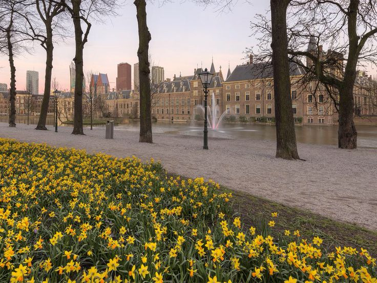 Spring - The Hague