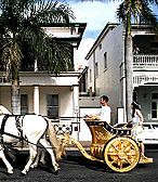 Chariot of the Olympics 2000 debut. http://www.artgilding.com.au