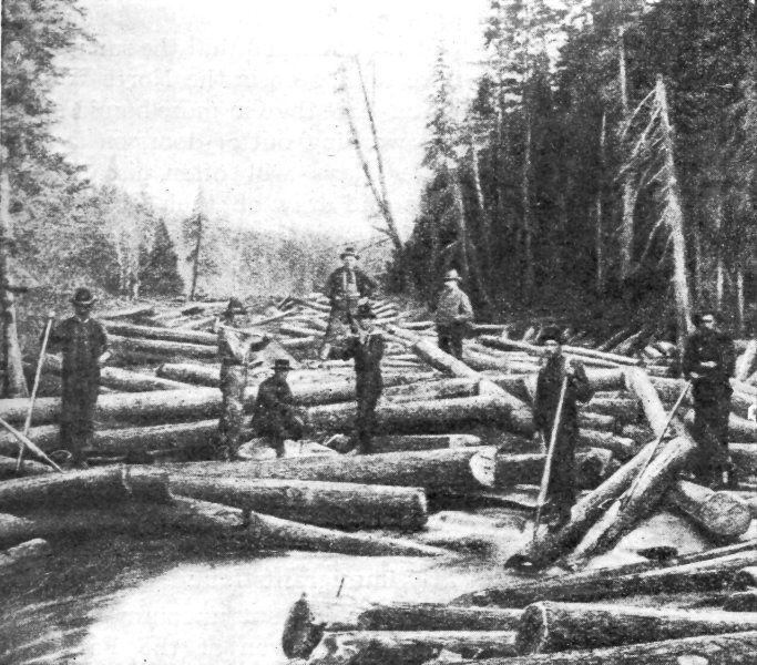 Running Logs 10 Logging Pinterest Running Log 10