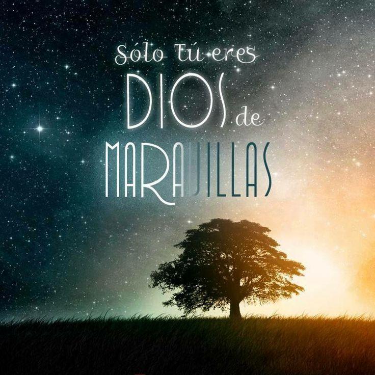 Dios es Dios de maravillas :) /frases cristianas