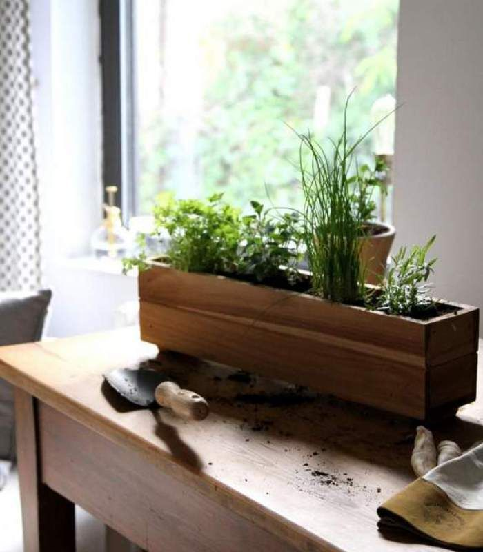 Kitchen Window Herb Planter: Best 25+ Window Herb Gardens Ideas On Pinterest