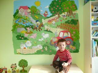 Aké farby použiť na maľovanie na stenu? - Voľné di...
